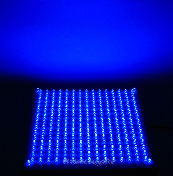 16w 229pcs Blue Led Grow Light Panel 100v 240v 50 60hz